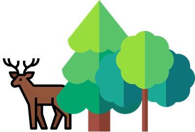Natur- und Waldkindergarten Haiterbach e.V.